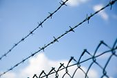pic of barbed wire fence  - barbed wire fence with sky and cloud background - JPG