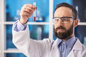 picture of tubes  - Handsome male scientist with a test tube working at the laboratory - JPG