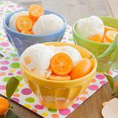 foto of kumquat  - Vanilla ice cream with fresh kumquats in colorful bowl - JPG