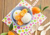 pic of kumquat  - Vanilla ice cream with fresh kumquats in colorful bowl - JPG