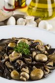 foto of edible mushroom  - Mixed edible mushrooms dish with raw ingredients - JPG