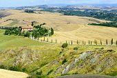 foto of senesi  - Crete senesi characteristic landscape in province of Siena  - JPG