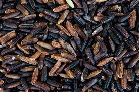 stock photo of rice  - close up of Thai rice berry or Thai black jasmine rice - JPG