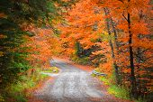 Autumn drive in rural New Hampshire poster