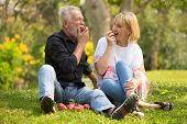 Happy Senior Couple Relaxing In Park Eating Apple Together Morning Time. Old People Sitting On Grass poster