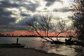 Red, Yellow Sunset River Horizon Silhouette Branch Of Tree Landscape. River Sunset Horizon. Dark Sry poster