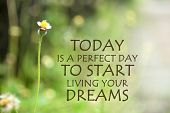 Inspirational Quote- Today Is A Perfect Day To Start Living Your Dreams. With One Single Beautiful W poster