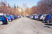 Outdoor Parking Lot With Car Parking In Large Asphalt Parking Lot With Autumn Trees. poster