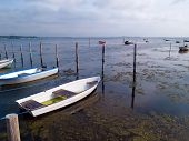 foto of dory  - Small dinghy dory - JPG