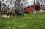 Amish Buggy Parked By Covered Bridge