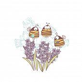 picture of honey-bee  - bees and hyacinth - JPG