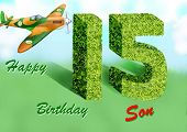 picture of spitfire  - Happy Birthday son card with spitfire shaped hedge - JPG