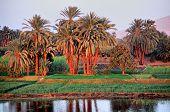 picture of aswan dam  - Sunset on Nile River cruise around Aswan. ** Note: Slight blurriness, best at smaller sizes - JPG