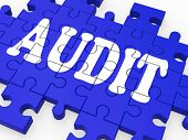 picture of financial audit  - Audit Puzzle Showing Auditor Inspections And Auditing - JPG