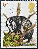 UNITED KINGDOM - CIRCA 2000: A stamp printed in Great Britain shows badger meles circa 2000