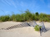 stock photo of dune grass  - Sand dune with fence and grass located in Virginia Beach - JPG