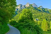 foto of pieniny  - Trail to the top of the Three Crowns in Pieniny mountains near the hut - JPG