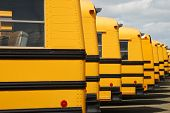 stock photo of lineup  - Several school buses are parked in a row at the bus lot - JPG