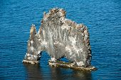 stock photo of petrified  - Hvitserkur is a spectacular rock in the sea on the Northern coast of Iceland - JPG