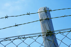 stock photo of barbed wire fence  - Barbed wire fence against blue sky - JPG