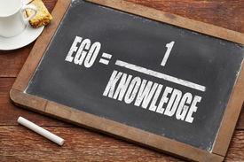 image of einstein  - ego and knowledge concept  - JPG