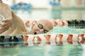 stock photo of 70-year-old  - closeup of man in his 70s swimming laps in pool - JPG