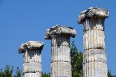 picture of ionic  - Ionic columns of the Temple of Athena Polias in ancient Priene Turkey