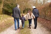 picture of grandparent child  - Grandparents With Grandchildren On Walk In Countryside - JPG