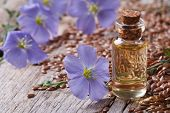 image of flax seed oil  - flax oil in a glass bottle closeup on a background of flowers and seeds horizontal - JPG