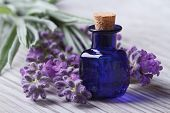 picture of essential oil  - lavender oil in a blue glass bottle and flowers on the table - JPG