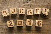 stock photo of budget  - Budget for 2016 - JPG
