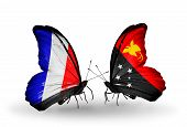 pic of papua new guinea  - Two butterflies with flags on wings as symbol of relations France and Papua New Guinea - JPG