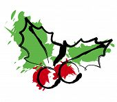 pic of holly  - christmas holly illustration - JPG