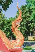 stock photo of serpent  - image of the serpent king in temple - JPG