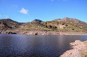 pic of canary  - Dark Water Lake in Gran Canaria Canary Islands Spain - JPG