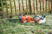 pic of chainsaw  - Chainsaw and pruning handsaw lying in the garden - JPG