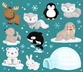 pic of igloo  - the vector set of animals that live in cold temperature - JPG