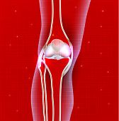 foto of knee  - Normal knee joint abstract red background leg silhouette - JPG