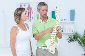 stock photo of spine  - Doctor showing anatomical spine in medical office - JPG