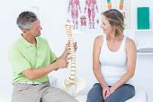picture of spine  - Doctor showing anatomical spine in medical office - JPG
