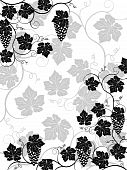 picture of grape-vine  - Floral background with a vine - JPG