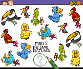 picture of brain teaser  - Cartoon Illustration of Finding the Same Picture Educational Game for Preschool Children - JPG
