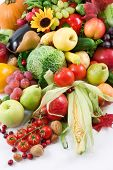 stock photo of fruits vegetables  - harvest  - JPG