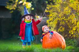image of little sister  - Little girl in witch costume and baby boy in huge pumpkin playing in autumn park - JPG