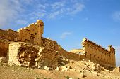 pic of euphrat  - early morning at ancient palmyra in syria - JPG