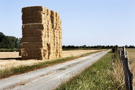 image of haystacks  - Bale of haystack and a dirt road in the countryside of France - JPG