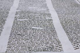 picture of torah  - Parchment - JPG