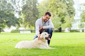 stock photo of labrador  - family - JPG