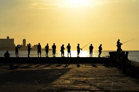 picture of malecon  - Every day - JPG