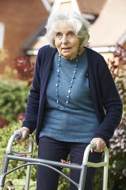 picture of zimmer frame  - Senior Female In Garden Using Walking Frame - JPG